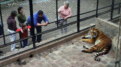 ONGs presentaron proyecto �nico para reconvertir el Zoo