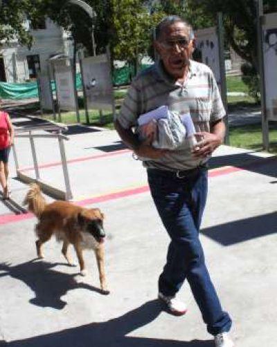Pasaron de ser perros de la calle a compa�eros fieles