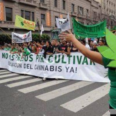Multitudinaria marcha en todo el pa�s por la regulaci�n del cannabis