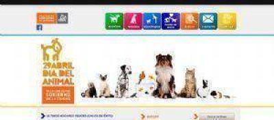 Empresa líder donó 1000 kilos a las protectoras de animales callejeros