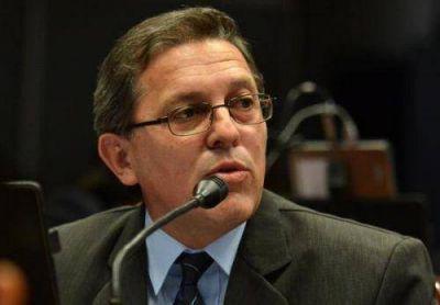 Pedirán informes acerca del impacto ambiental que produce la empresa Alto Paraná