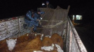 Intensos controles en zona rural, de chacras y caminos a establecimientos ganaderos
