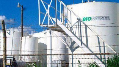 El Senado podría convertir en ley la eximición del pago de impuestos al biodiesel