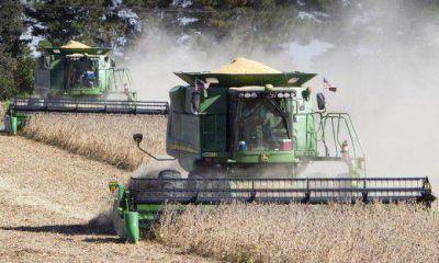 El valor bruto de cosecha gruesa llegaría a u$s 10.157 M en la provincia