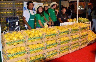 Aprestos para la edición 2014 de la Fiesta Nacional del Pomelo