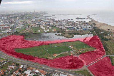 """Reserva del Puerto: """"La deuda ambiental de Mar del Plata"""""""