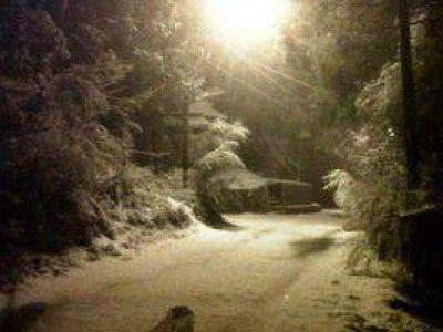 Comité de emergencia en prevención por nevadas