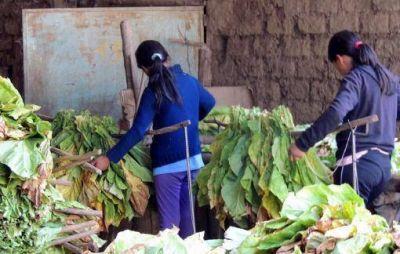 El Estado difunde derechos y programas sociales para evitar el trabajo infantil rural