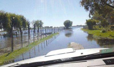 """Rafael Torello: """"Ni los técnicos saben de dónde viene tanta agua en el campo"""""""