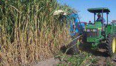 Entregan cosechadora a una cooperativa de La Esperanza