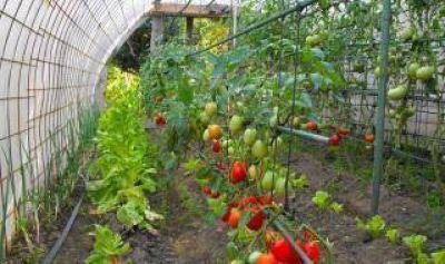 Luján: Entrega de subsidios a productores