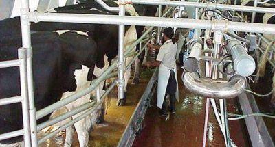 Asistencia financiera a productores lecheros