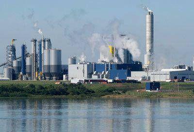 El monitoreo ambiental revela la contaminación de UPM Botnia