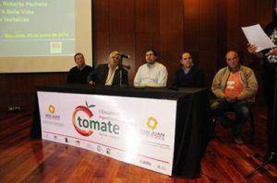 Procuran autoabastecer la demanda nacional de tomates