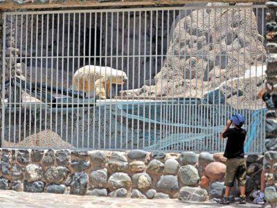 Así es el proyecto que pretende que el Zoo de Mendoza sea un ecoparque