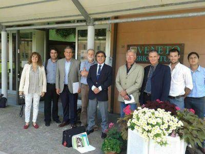 Interés de Italia para invertir en generación de energía por biomasa con recursos catamarqueños