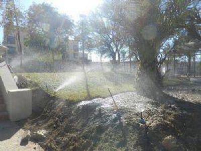 Nuevo sistema de riego en plaza principal