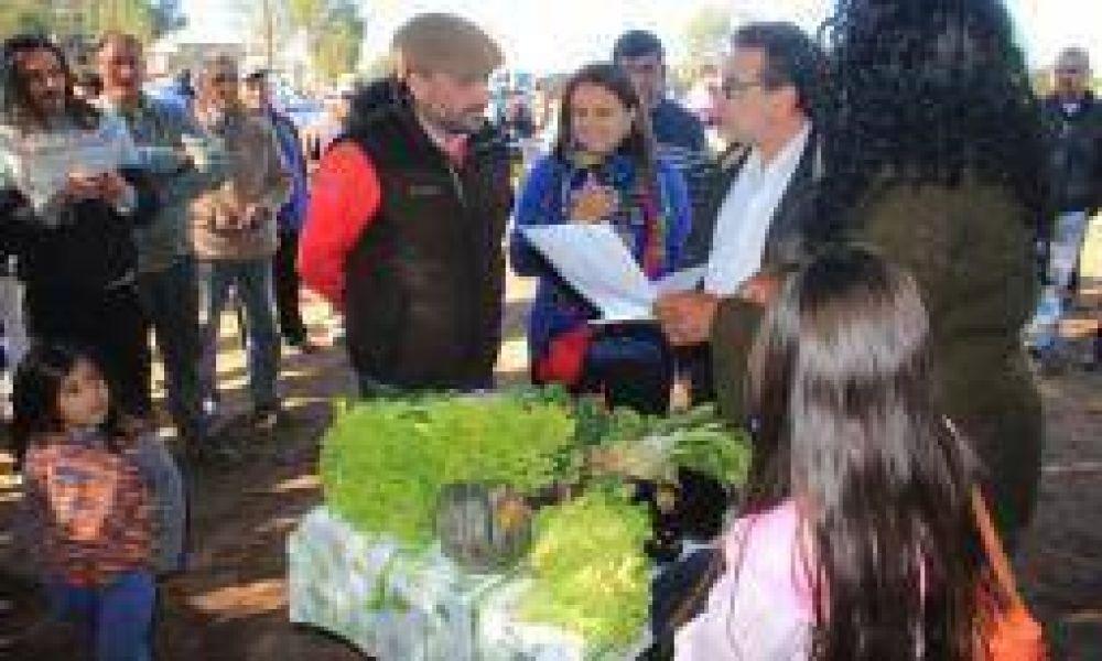 Capital. Impulsan la venta de un bolsón de verduras frescas a $45