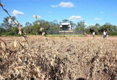 Final de la campaña sojera 2013-2014: en el Chaco se cosecharon 1.574.000 toneladas