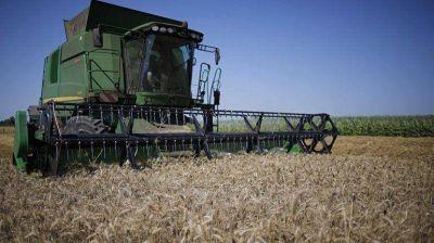 Agricultura pidió a productores que vendan el trigo cosechado para habilitar un nuevo cupo