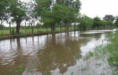 Solicitan que se amplíe a Tandil la emergencia agropecuaria