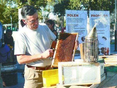 La apicultura crece en Mendoza y ya se produce más de 860 mil kilos de miel al año
