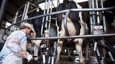 Lanzan nueva línea de crédito de $500 millones para productores lecheros
