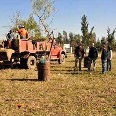 El municipio continúa con el plan de reforestación
