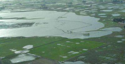 Tres Arroyos pide declarar la emergencia agropecuaria