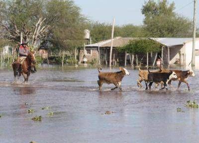 El gobernador Insfran dicto el decreto de emergencia agropecuaria para el agro y ganadería