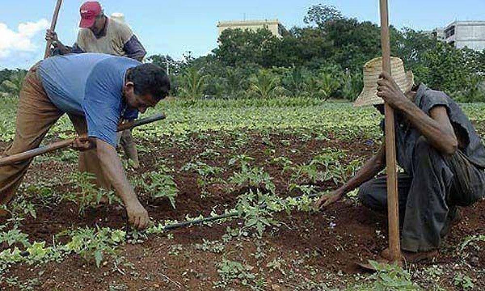 Por la crisis económica, los cubanos podrán tener más de un empleo
