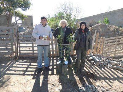 �Forestaci�n-arbolado urbano para el proyecto infraestructura p�blica para la urbanizaci�n Riveras del Valle �