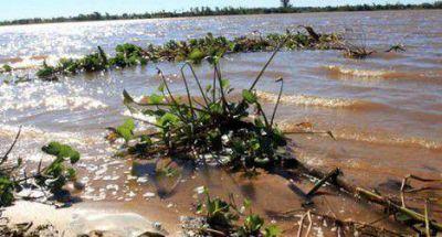 El Paraná sigue bajando y 11 familias volvieron a sus hogares