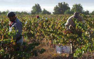 Economías Regionales: Para The Wall Street Journal la inflación afecta más al vino