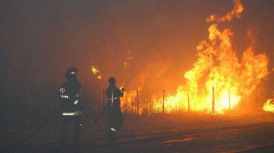 Se registraron varios incendios forestales