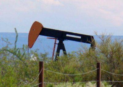 Diputados le pidió a Jorge que rechace la nueva Ley de Hidrocarburos