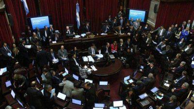 En marat�nica sesi�n, la C�mara alta aprob� la media sanci�n de la Ley de Abastecimiento
