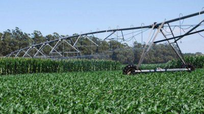 Por la baja de la soja, Argentina perdi� en dos meses u$s2.200 millones en exportaciones
