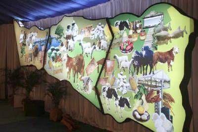Arranca ma�ana la Expo Formosa 2014
