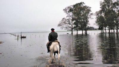 Hay campos enteros bajo el agua y los productores temen más lluvias