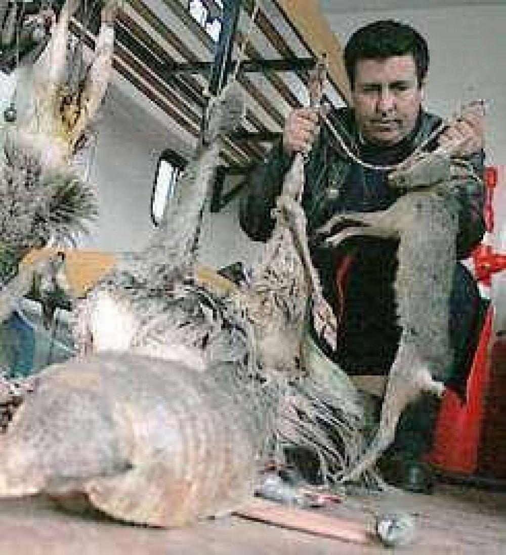 La caza furtiva extinguió la chinchilla y otras especies