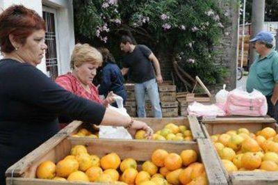 Ofrecen cítricos entrerrianos a precios populares en distintos puntos de Paraná