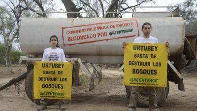 La justicia aval� suspender un desmonte en Cuchuy con la presencia de Greenpeace