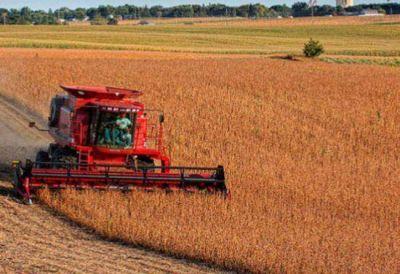 Buscar�n con la Ley de Abastecimiento US$ 10 mil millones de soja sin vender