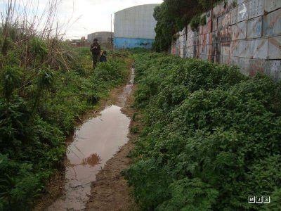 Moliendas del Sur vierte lixiviados t�xicos en la Reserva del Puerto