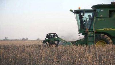 Al precio actual, la siembra de soja no es rentable en C�rdoba
