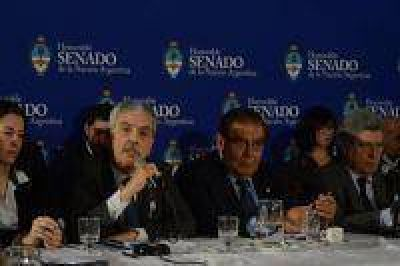 Ley de Hidrocarburos: De Vido expuso en el plenario de comisiones del Senado