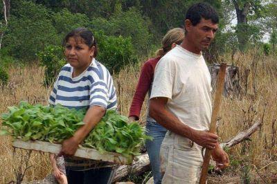 Diputados dejaron sin financiamiento a la Ley nacional de Agricultura Familiar