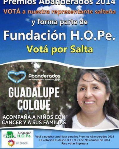 FUNDACIÓN H.O.P.E. CERCA DEL PREMIO ABANDERADOS 2014