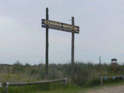 El Senado Provincial sancion� la ley para proteger la Reserva Natural Puerto Mar del Plata